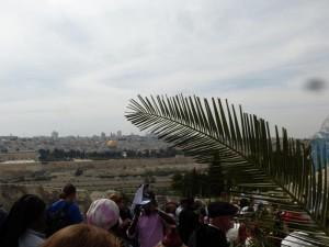 In der Ferne: Jerusalem