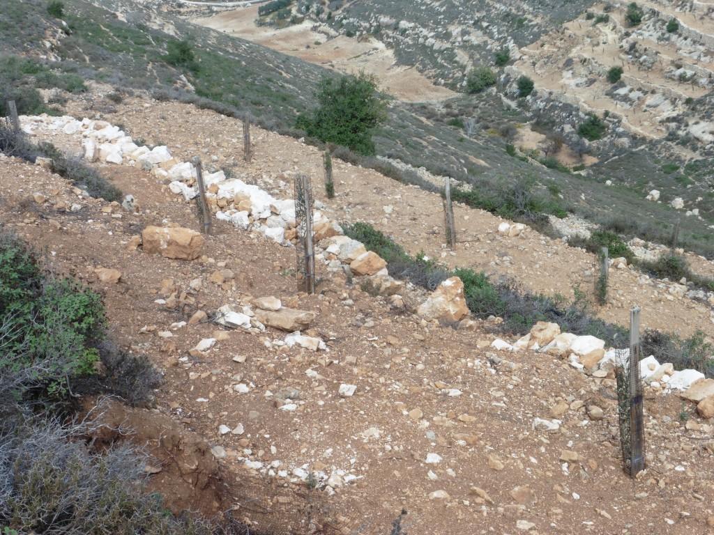 Hier soll nichts mehr gepflanzt werden im Hintergrund links im Tal das Gebiet, wo im Mai die Obstbäume zerstört wurden