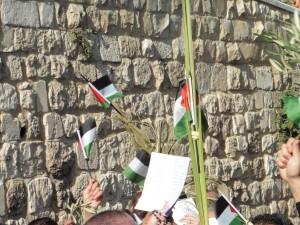 """""""palästinensische"""" Palmzweige"""