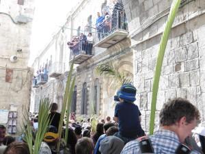 Reis zum Einzug in Jerusalem