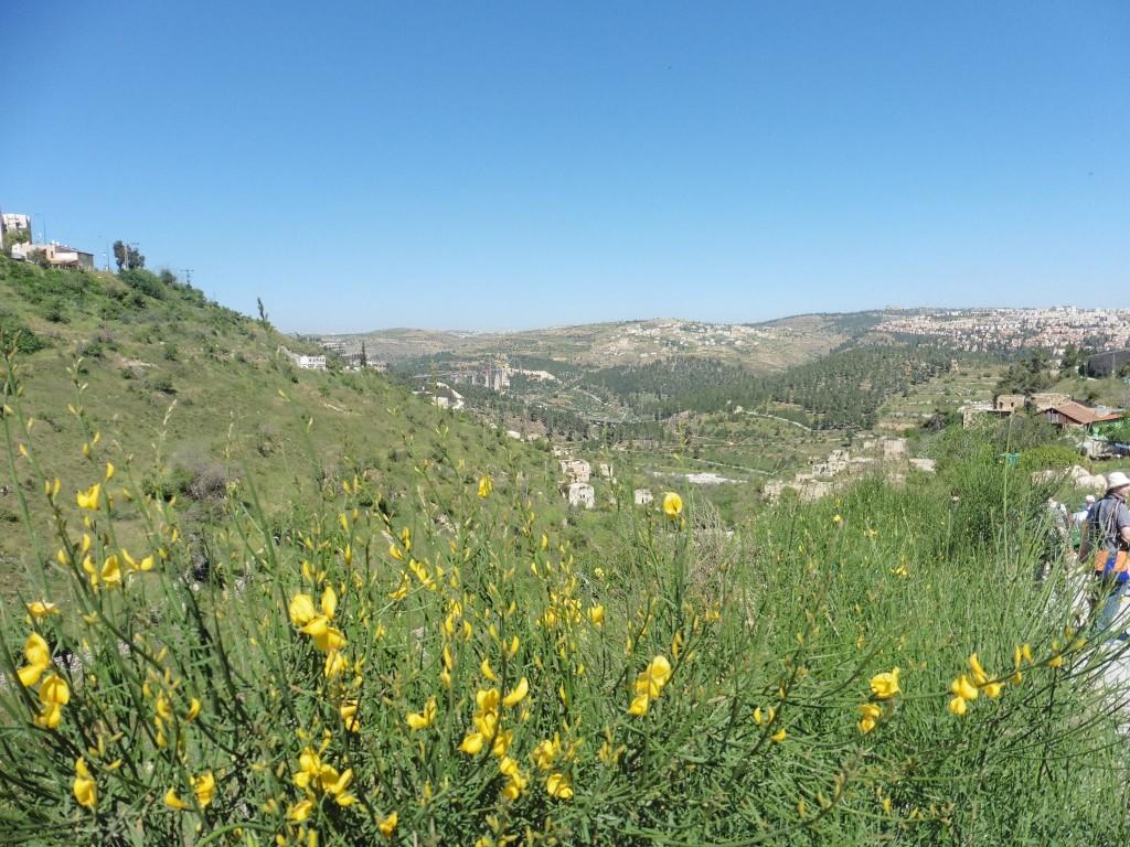 """Hat man Jerusalem verlassen führt der """"Emmausgang""""in das wunderschöne judäische Bergland"""