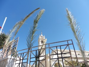 In Beit Jala ist Palm-Sonntag