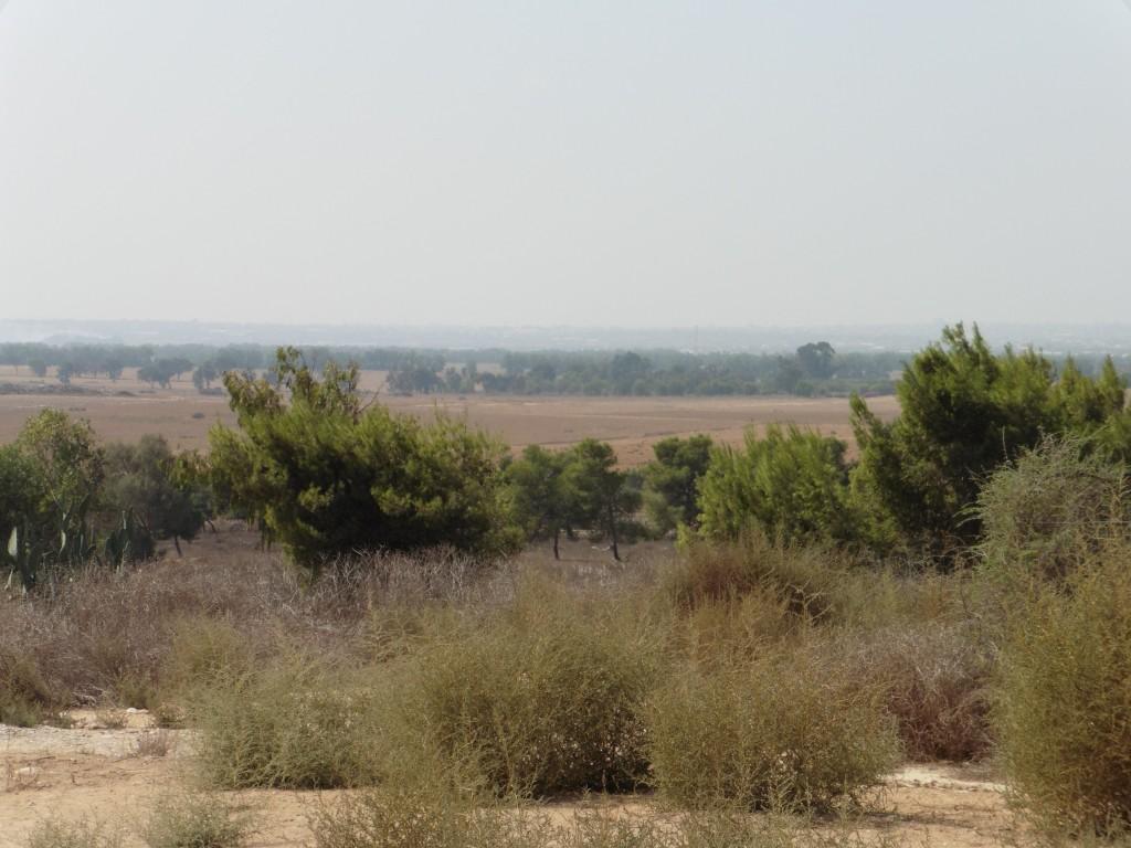 Blick auf Gaza