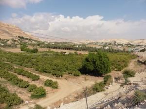 grünes Jordantal