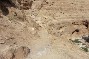 im Wadi Qelt