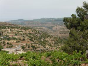 Blick in ein schönes Tal von Talitha Kumi aus