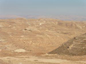 Leben am Rande der Wüste